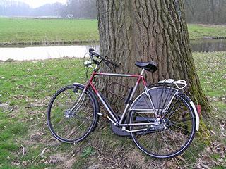 通勤・通学で活躍! 今人気の自転車が知りたい   マイナビニュース