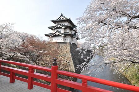 青森県・弘前城が約100年ぶりに動く! 桜の季節には本丸内濠の一般開放も