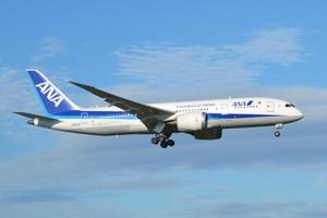ANAマイルでネパール地震の支援ができる! ANAも無償渡航・輸送で協力