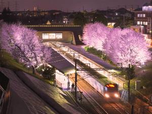 相鉄いずみ野線弥生台駅で「弥生台 春待ちライトアップ」12月中の毎日実施