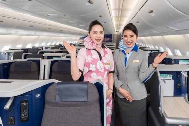 ANAがハワイ線に投入する「空飛ぶウミガメ」、A380型の機内公開