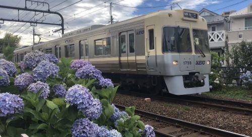 京王電鉄 テレワーク