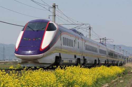 JR東日本719系5000番台、山形線の普通列車 新塗装の山形新幹線「つばさ」。線路沿いの菜の花