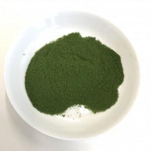リッチグリーン 粉末画像2
