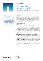 SAP S/4 HANA移行を成功に導く、ネットアップのストレージソリューション [PR]