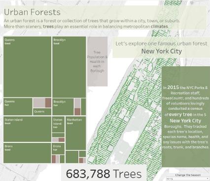 ニューヨーク市の都市林に関するダッシュボード