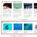 ベルトラ、旅行予約サイトにAIサービス「アイジェント・レコメンダー」を導入 [事例]