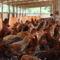 「塚田農場」がVRをアルバイト研修に導入する狙い