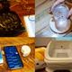 猫用IoTトイレ、黒電話型スマートリモコン......DMM.make AKIBA支援のスタートアップがデモを披露