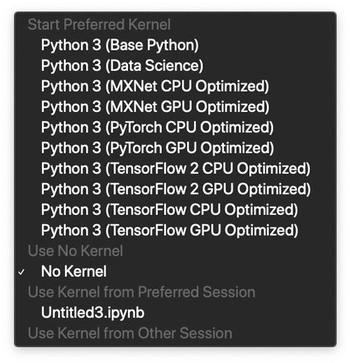 Amazon SageMaker Notebooksで選択可能なカーネル