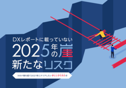 DXレポートに載っていない 2025年の崖 新たなリスク