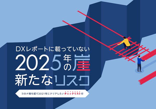 コロナ禍で生まれた、DXレポートに載っていない新たな「2025年の崖」のリスクとは? [PR]