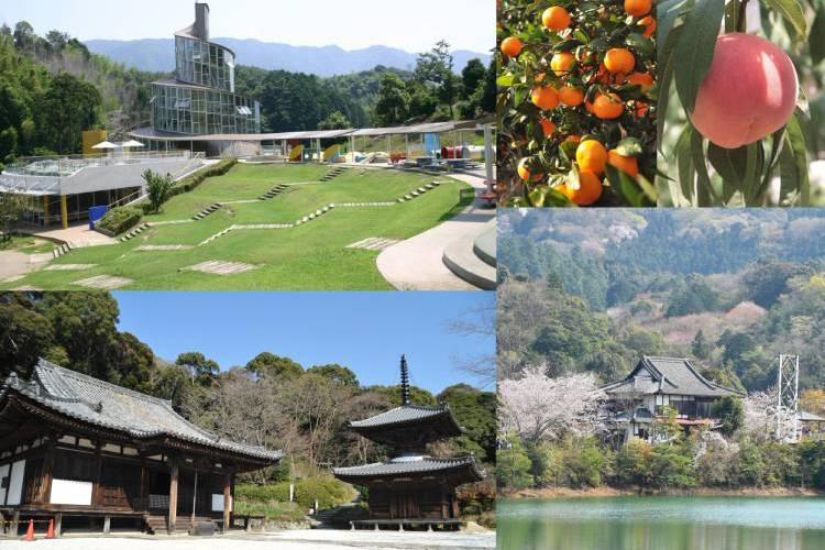 和歌山県海南市のふるさと納税を紹介!海の幸と山の幸がたっぷり
