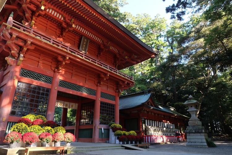 茨城県鹿嶋市は産業が盛んで自然も豊か!美味しい返礼品をいただこう