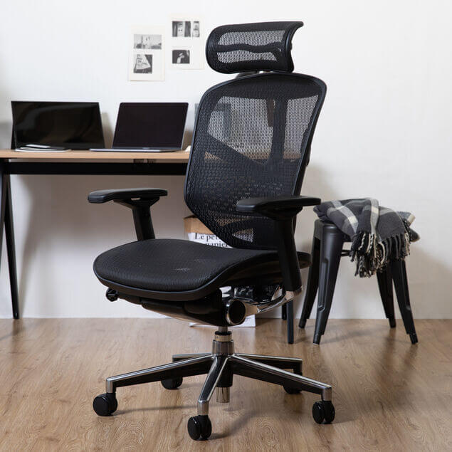 Ergohuman Enjoy オフィスチェア