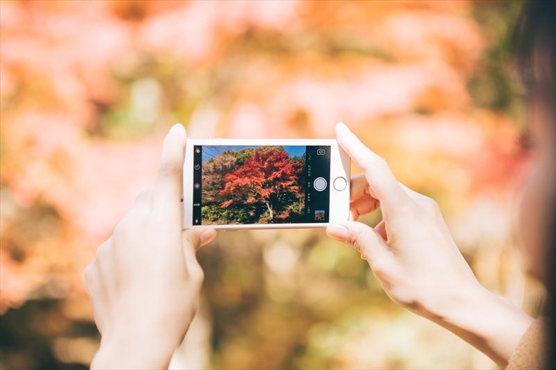 スマホできれいに写真を撮る方法
