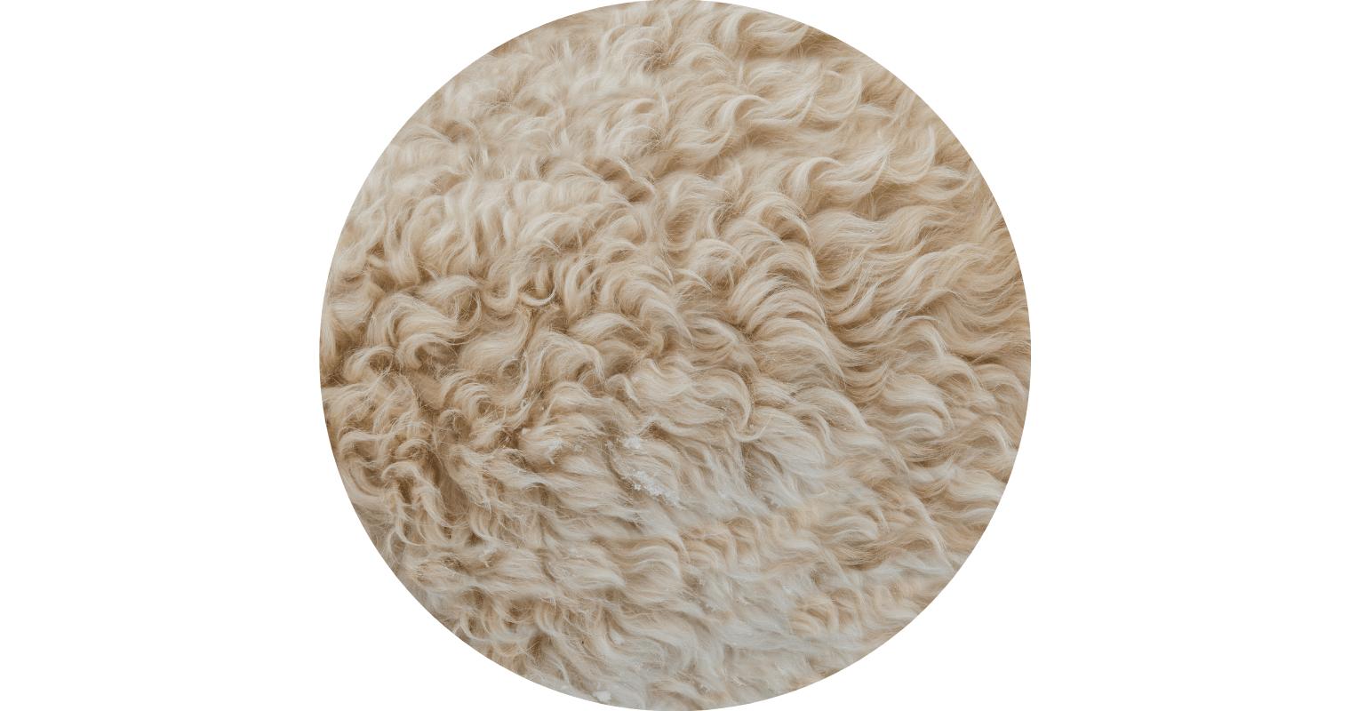 ウール(羊毛)