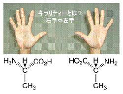 東大、有機化合物で磁気キラル二...