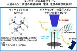 NTTなど、量子センサ実現へダイヤモンド中電子スピンの寿命の改善法を確立