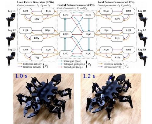 001 - 【ロボット】東工大、アリのように動く6脚ロボットの制御装置を開発[03/12]