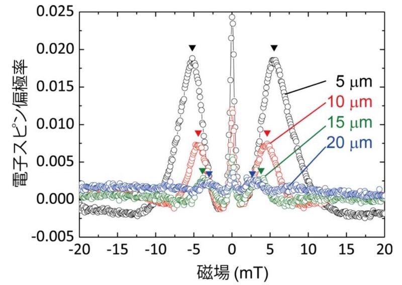 各スピン検出端子で測定したスピン電圧(出所:東北大ニュースリリース※PDF)